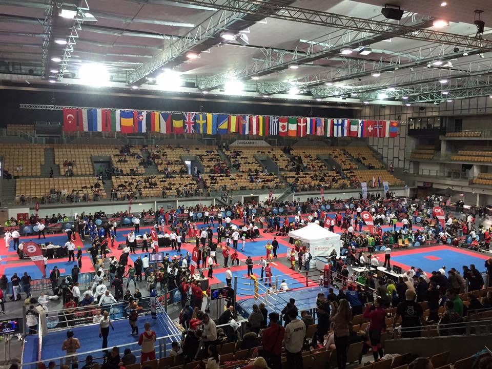 austrian classic 2017 kickboxen
